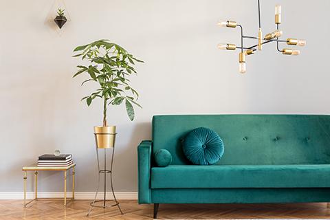 Une décoration tendance velours et doré !