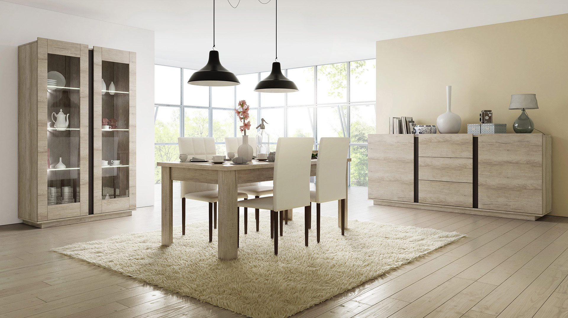 Des meubles de séjour design