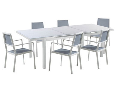 Table + 6 fauteuils